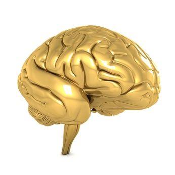 Goldenes Gehirn