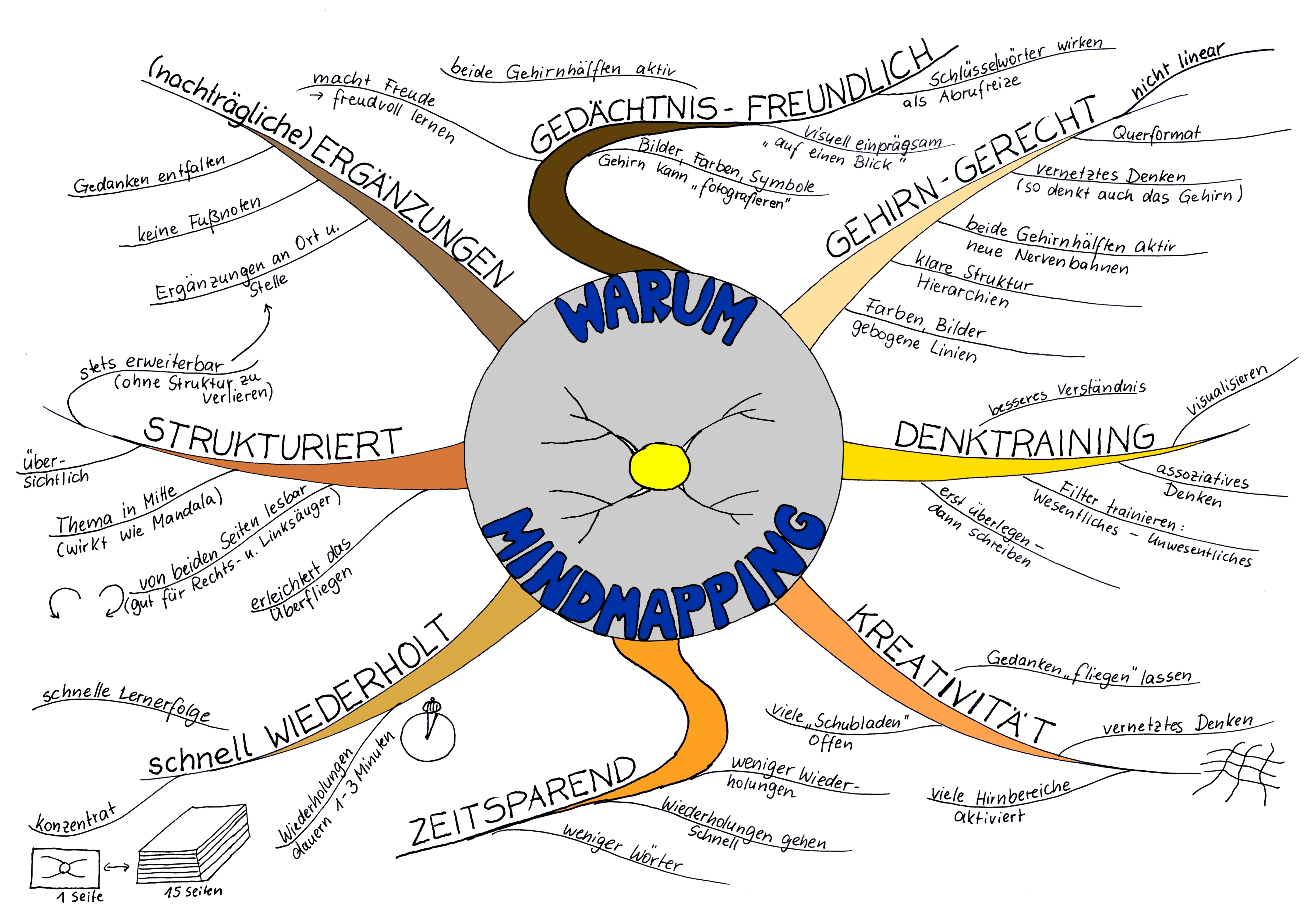 Mindmapping_rote-Waldameise