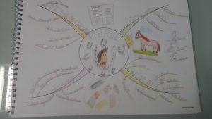 Ein Mindmap über Pferde, gezeichnet am gleichen Abend